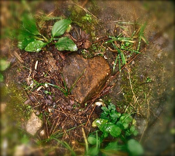 srdce kamen